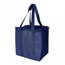 Non Wover Cooler Bag With Zipped Lid